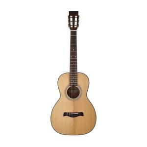 Richwood P40 guitare acoustique Parlor