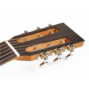 Richwood P50E guitare acoustique Parlor électro